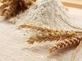 Gubimo tržišta zbog pada kvaliteta brašna