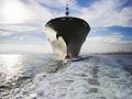 Ponovo grade brodove: S Begeja put Holandije