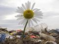 EBRD: Kredit od 72 miliona evra za novu deponiju u Beogradu