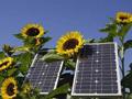 Saudijska Arabija želi izgraditi najveću solarnu elektranu na svijetu