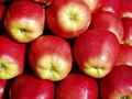 Uvozna jabuka u BiH skoro pa besplatna