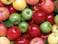Pozitivne naznake za nastavak izvoza jabuka u Rusiju
