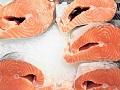 Genetski modifikovani losos i zvanično stiže u radnje