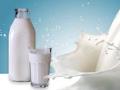 Milioni za uvoz jaja i mlijeka