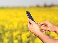 StartLabs i South Central Ventures koinvestirali su 600.000 dolara u srpski startap za poljoprivrednike