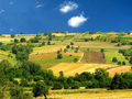 Silos, njive i pašnjaci ponuđeni za 79 miliona dinara