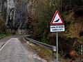 BiH prva na svetu sa saobraćajnim znakom upozorenja na šišmiše