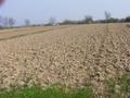 Licitacija za zakup deset hektara zemljišta u Nišu